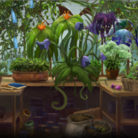 Herbology and Potions Day