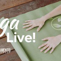 Yoga Moves Us Live (Online)