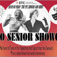 Sacramento Theatre Company Young Professionals Senior Showcase (Online)