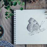 Art and Nature Summer Art Program