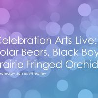 Celebration Arts Live: Polar Bears, Black Boys, and Prairie Fringed Orchids