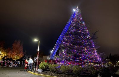 Orangevale Virtual Community Tree Lighting