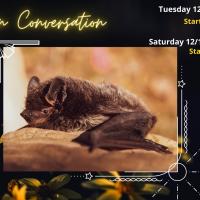 Hibernation Conversation