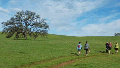 Deer Creek Hills Preserve Self-Guided Hikes