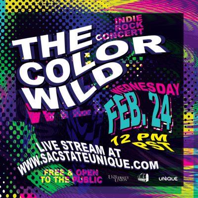 The Color Wild Indie Rock Concert