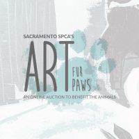 Art Fur Paws Online Art Auction
