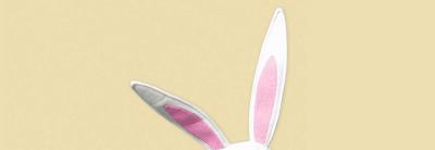 Bunny Magic with Arden Fair