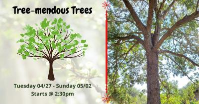 Tree-mendous Trees