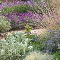 Landscape Redesign: An Environmentally-Friendly Approach