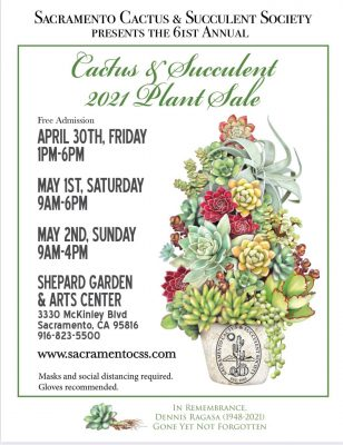 Sacramento Cactus and Succulent Society Spring Sale