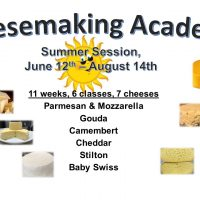 Scratch Made Life Cheesemaking Academy
