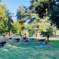Fresh Air: Fremont Park
