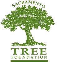 Tree Heroes Celebration