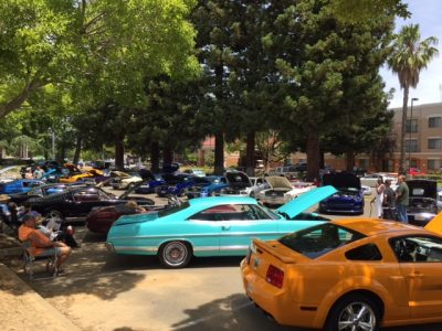Mustangs and Fords at the Marriott 24th Annual Car...