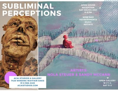 Subliminal Perceptions: July ACAI Gallery Show