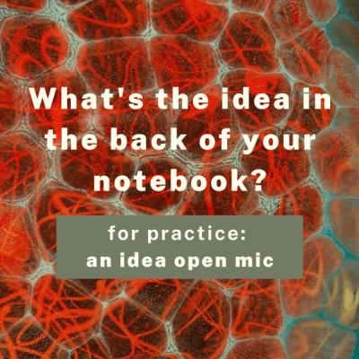 For Practice: Idea Open Mic