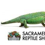Sacramento Reptile Show (Canceled)
