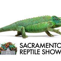 Sacramento Reptile Show