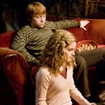 Harry Potter and the Half-Blood Prince (Wizarding ...