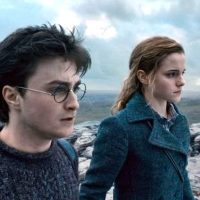 Harry Potter and the Deathly Hallows: Wizarding World 20th Anniversary
