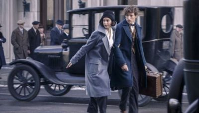 Fantastic Beasts and Where to Find Them (Wizarding World 20th Anniversary)