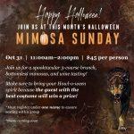 October Mimosa Sunday (Halloween)