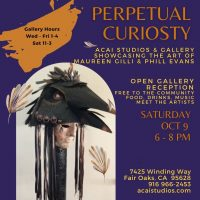 Perpetual Curiosity: The Art of Phill Evans and Maureen Gilli