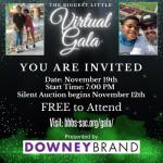 The Biggest Little Virtual Gala