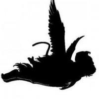 Flying Monkey Productions