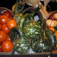 Sacramento Vegetarian Society