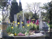 Old City Cemetery Committee