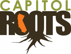 Capitol Roots Studio & Productions (CLOSED)