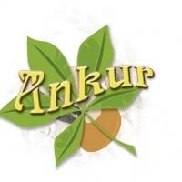 Ankur Inc.