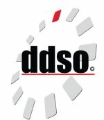 Developmental Disabilities Service Organization (DDSO)