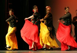 Flamenco del Oro