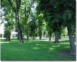 McClatchy Park